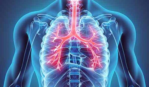 5 طرق للحفاظ على صحة الرئتين